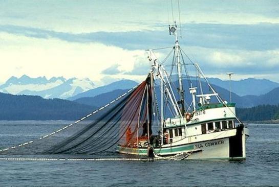 судно рыболовов сканворд