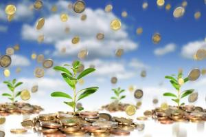 Как защитить благополучие вашей компании на всех этапах роста