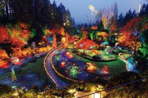 Освещение территории парков для создания выразительного облика населенного пункта