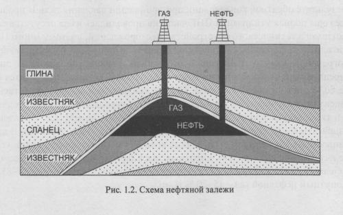 Нефть и ее происхождение
